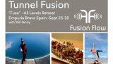 Fusion Flow Windoor